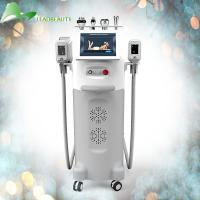 Quality The best results rf beauty equipment cryolipolysis cryotherapy fat freeze machine for sale
