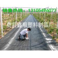 Quality 2016 high quality weed barrier/weed mat polypropylene woven geotextile for sale