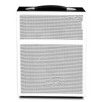 Quality High Power 80w Portable Speakers With Fm And Usb , Bluetooth Portable PA System for sale