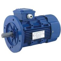 Quality THREE PHASE MOTOR Y2-2 6P SERIES for sale