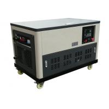Water cooled 30kw portable gasoline generator genset 4 cylinder engine enclosure auto start for sale