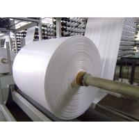 Buy Fireproof PP Polypropylene Banner Material , Woven Pp Fabric For Latex Or UV at wholesale prices