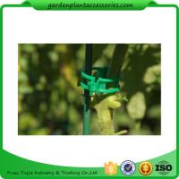 Quality Colorful Garden Plant Accessories Plastic Garden Plant Clips / Plant Support Clips 45*40*50 Colorful for sale