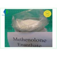 Quality CAS 303-42-4 Nandrolone Steroid , Methenolone Enanthate Powder Lean Muscle Steroids for sale