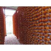 Quality good taste and quality dried persimmon exotic dried fruits for sale