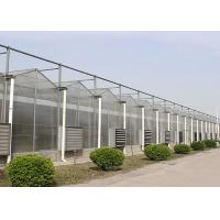 Side Height 3-7m Large Polycarbonate Greenhouse With Ventilation System for sale