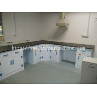 Quality China PP Lab Workstation Suppliers / Low Price PP Lab Workstation / Newest PP Workstation for sale