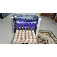 Two Meter Long Conveyor Egg Printing Machine / Egg Stamping Equipment for sale