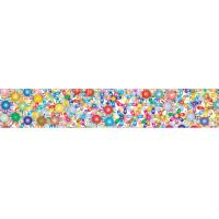 Quality 2x12.25 Inches Rulers 3D Lenticular Printing Service With Multicolored Spinning Wheels for sale