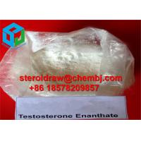 Quality Nature Testosterone Enanthate Raw Testosterone Steroids powder for Fat Burning for sale
