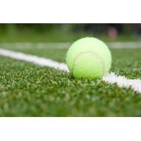Quality Non Infill Flat Surface Tennis Court Artificial Grass Fire Resistant 8800 Dtex for sale