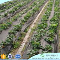 China Anti-UV Best quality PP spunbond nonwoven fabric,100%polypropylene,agriculture cover,weed mat,weed control,friut bag on sale