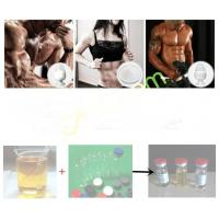 Quality 3704-09-4 Tren Anabolic Steroid Cheque Drops Powder Male Enhancement Drugs Mibolerone Acetate for sale