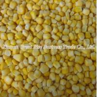 China Individual Quick Frozen Sweet Corn Frozen Suger Corn or Pole Corn on sale