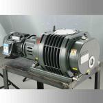 Quality BSJ150L Freeze Drying Roots Vacuum Pump 500 m³/h Roots Blower Vacuum Pump for sale
