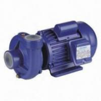 Quality Single Impeller Agricultural Water Pump 0.75HP For Household Watering for sale