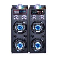 Quality Dual 10 Inch Portable PA Speaker System Bluetooth Disco Light Speaker For Party for sale