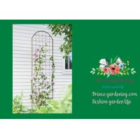 Quality Metal Wall Garden Flower Trellis Powder Coated For Climbing Flowers for sale