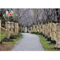 Buy Heavy Duty Burlap Tree Wrap Brown Landscape supply type Gardening tree protector at wholesale prices