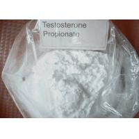 Quality Anabolic Steroids 100mg/ml Testosterone Propionate for Bodybuilding for sale