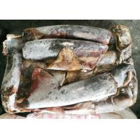 Quality Light Red Frozen Giant Squid Whole Round 1-2kg Dosidicus Gigas for sale