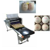 High Tech Carton Coding Machine Eggs Number Inkjet Printer With Solvent For Egg Supplier for sale
