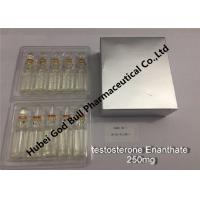 Quality testosterone enanthate Injectable Anabolic Steroids injection 250mg/ml 1ml/vial super quality for sale