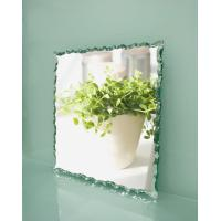 Quality wall mirror glass,decorative glass mirror, door mirror, dressing mirror for sale