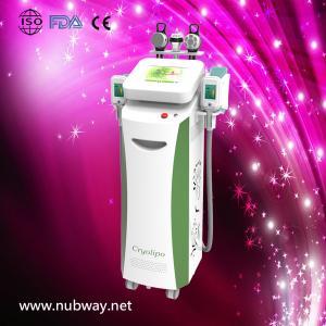 China Multifunction Cryolipolysis and Velashape Body Slimming and Beauty Machine on sale