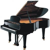 Buy Black Polished 185cm 88 KEY Senior Acoustic Grand Piano With Straight Leg AG-GP185B at wholesale prices