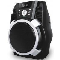 Quality Outdoor Portable Battery Powered Active Speaker Systems With SD / FM And USB for sale