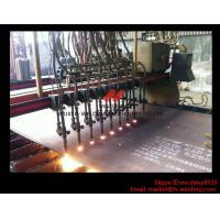 Quality Flame CNC Gantry Cutting Machine Single Side Drive For Plate Cutting 5000mm Rail span for sale