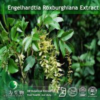 Quality Engelhardtia Extract for sale