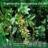 Buy cheap Engelhardtia Extract from wholesalers