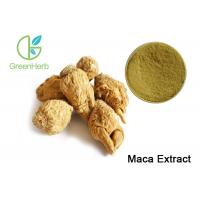 China High Purity Herbal Plant Extract / Organic Maca Extract Powder Brown Yellow Color on sale