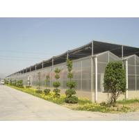 No Welded PC Sheet Greenhouse Galvanized Steel Skeleton Various Sheet Colors Available for sale