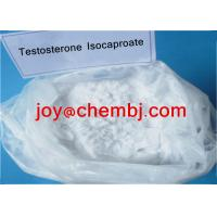 Quality Testosterone Isocaproate/ Test Iso Bodybuilding Steroid Raw Androgen Powder for sale