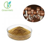 China Reduce Blood Cholesterol Levels Agaricus Blazei Murill Extract Anti - Oxidant on sale