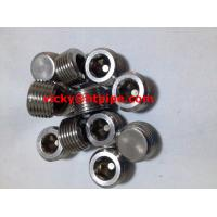 Quality 904L / 1.4529 / 254SMO stainless steel fastener hex dome cap nuts 2205 /2507 for sale