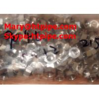 Quality duplex stainless S31020 steel fastener bolt nut and washer for sale