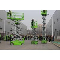 Quality Electric Hydraulic Elevated Lift Platform Capacity 230KG Capacity for sale