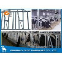 Buy cheap 1050mm Height Locking Feed Barriers for 8 Cattle in Pasture from wholesalers