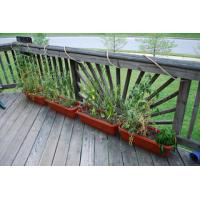 Quality Outdoor Decking Bamboo Flooring for sale