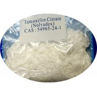 Quality Anti Estrogen Steroids Tamoxifen Citrate CAS 54965-24-1 with High Purity for sale