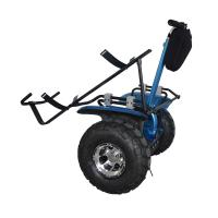 China 2014 electric scooter golf cart on sale