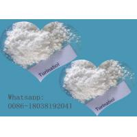 Quality Oral Turinabol 4-Chlorodehydromethyltestosterone Anabolic Steroid  Powder  For Producing Capsule  50mg Tbol for sale