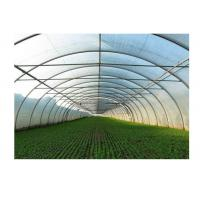 Quality Agricultural Greenhouse Steel Pipe High Tunnel Durable Maintenance Free for sale