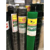 Quality galvanized or pvc coated rabbit netting / poultry net hexagonal wire mesh for sale