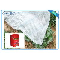 Quality Degradable Weed Control Mat Made from Black or White Anti-UV PP Non Woven Fabric for sale