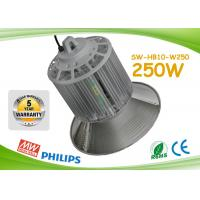 Quality AC90 - 305V 250w LED lighting for warehouse, workshop, gym, super bright 25000lm for sale